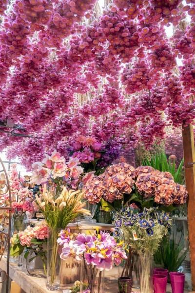 Как и где выбрать лицей флористов от биржи труда (службы занятости)