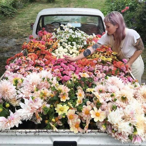 Как и где выбрать учебную студию (салон) флористов