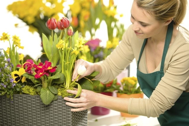 Где найти и как искать лицей флористов